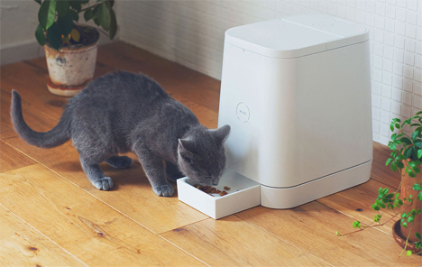 modern minimal automatic pet feeder