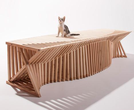 Cat Architecture 2