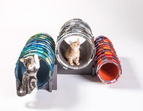 Cat Architecture 6