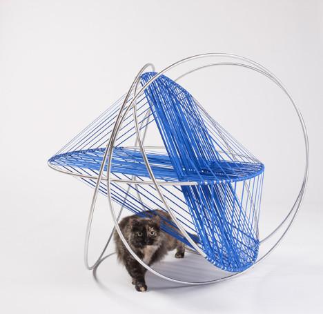 Cat Architecture 7