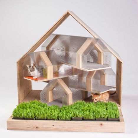 Cat architecture 1