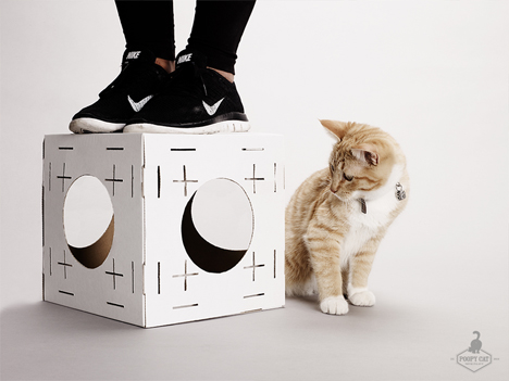blocks modular cardboard play set for cats
