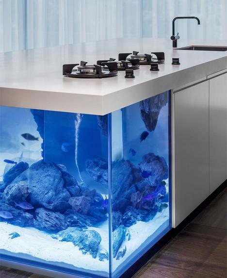 kitchen island aquarium 3