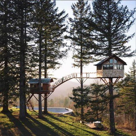 cinder cone tree house skate park