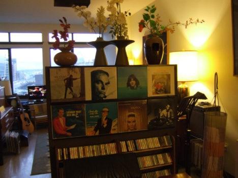 Records on Walls Room Divider