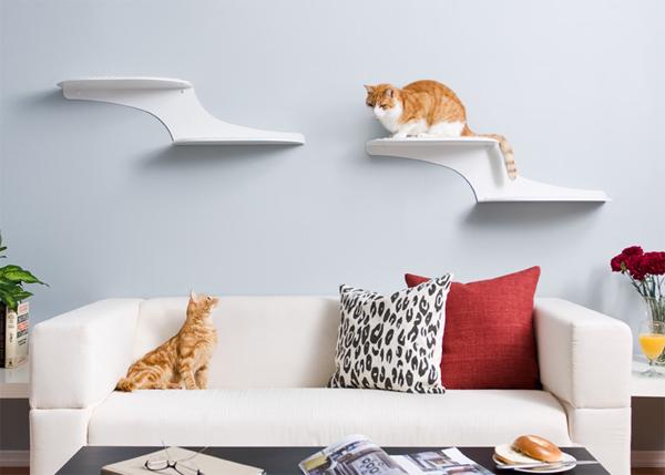 cat litter humidity control