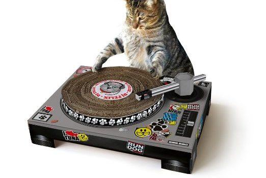 Cat DJ Scratcher
