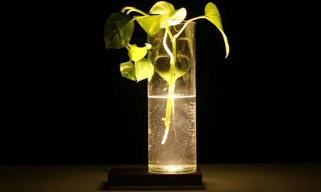 base lamp 4