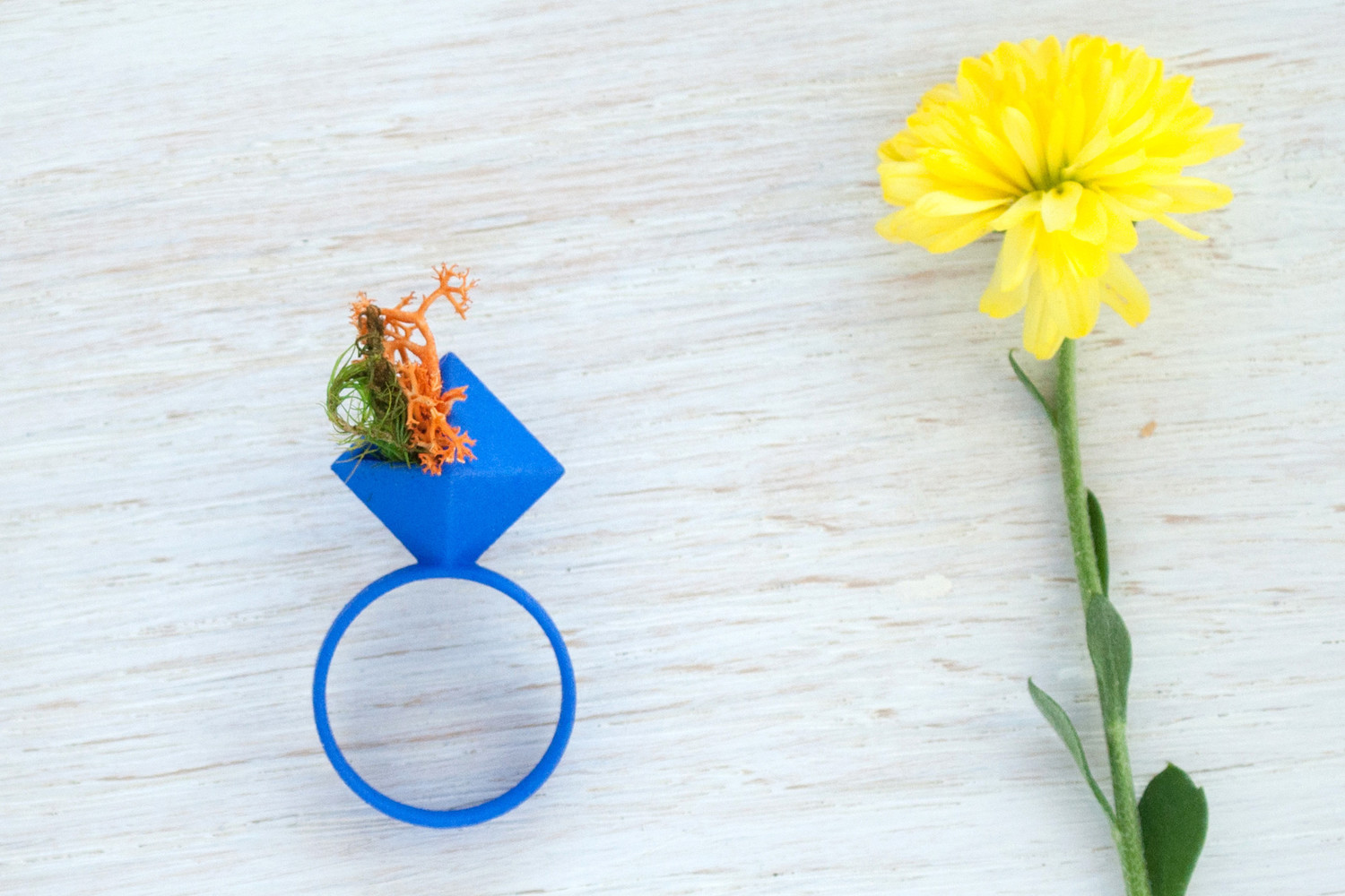 Wearable Planter Ring