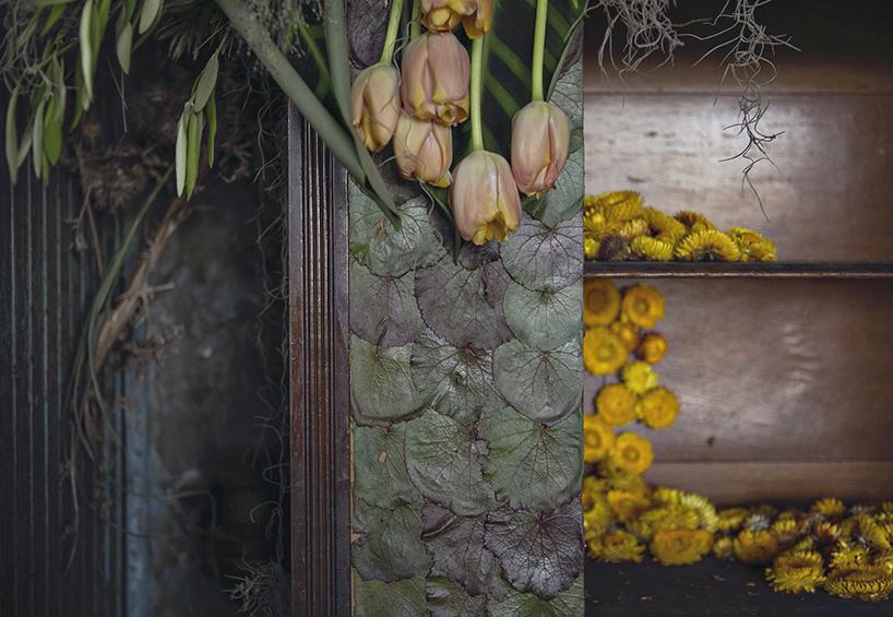 flower-house-detroit-2