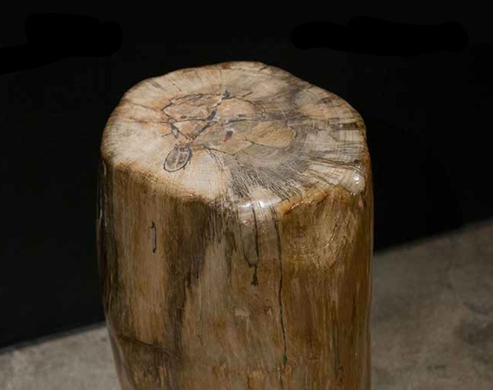 Hudson Furniture Petrified Wood