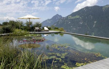 Biotop swimming lake with mountain view