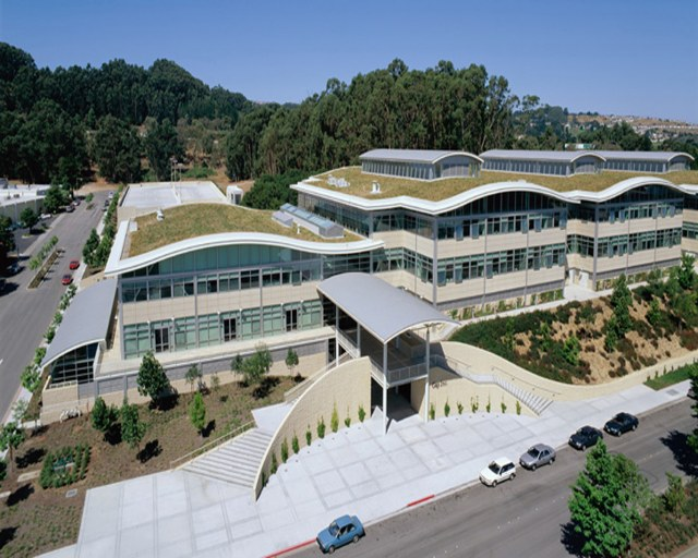 Hydrotech Garden Roof example at 901 Cherry Avenue (The Gap) in San Bruno, CA