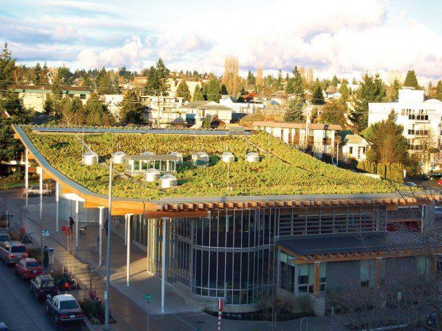 Garden Roof at Ballard Library in Seattle, WA