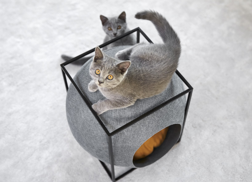 Cat Cocoons: Cozy Feline Furniture Fits into Modern Homes