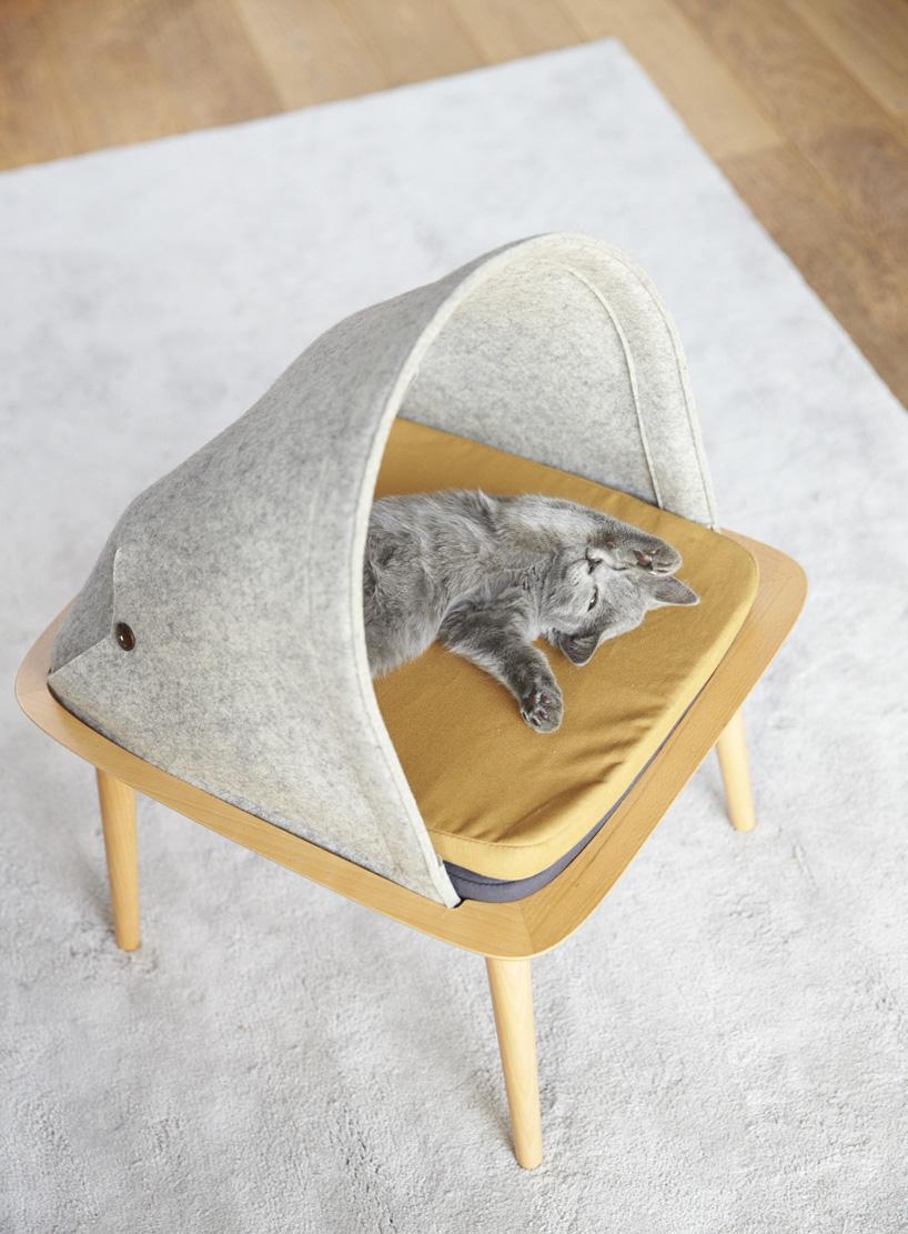 modern cat furniture 5