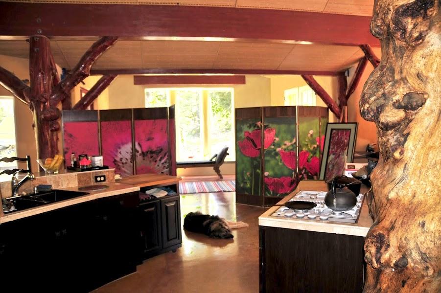 Interior of Steve Padgitt Residence, built from straw bales