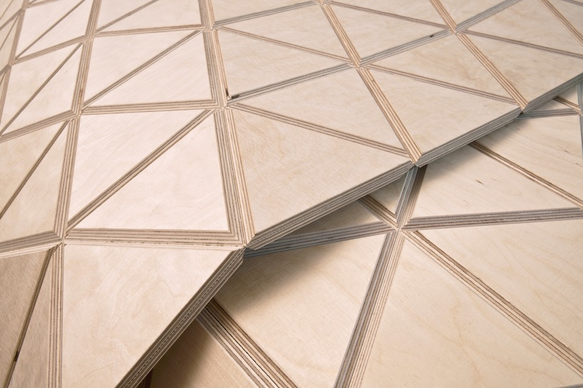 wood-skin-closeup
