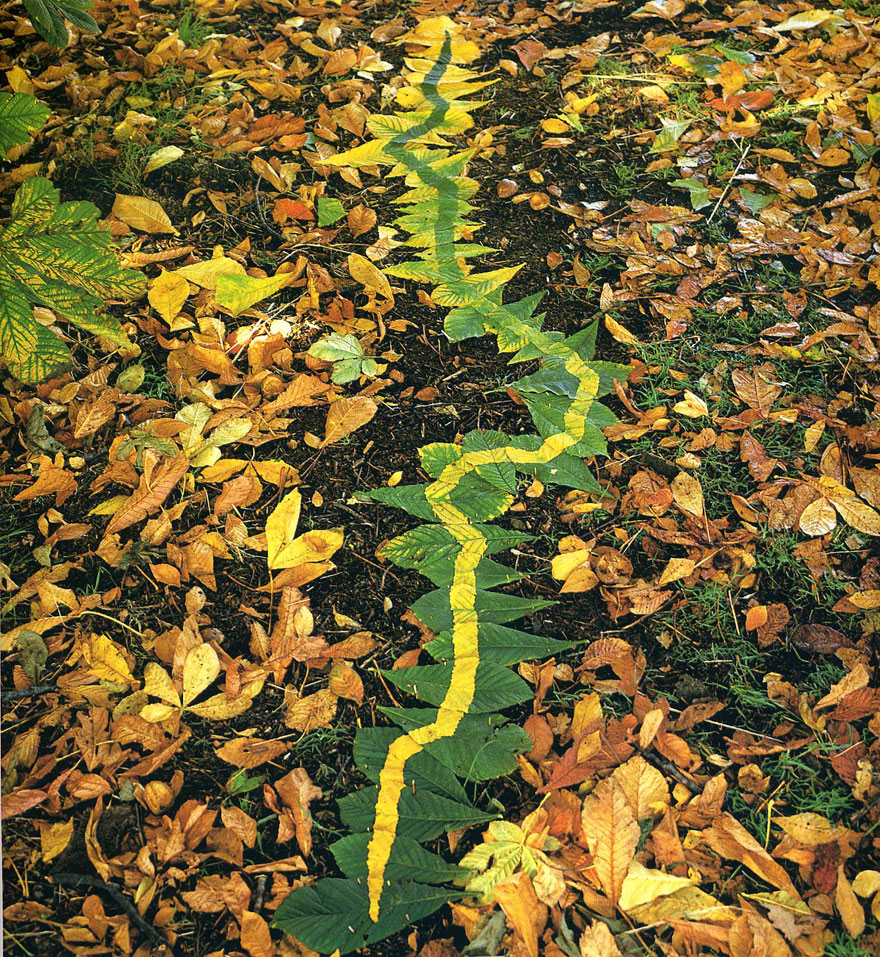 andy-goldsworthy-laves-2