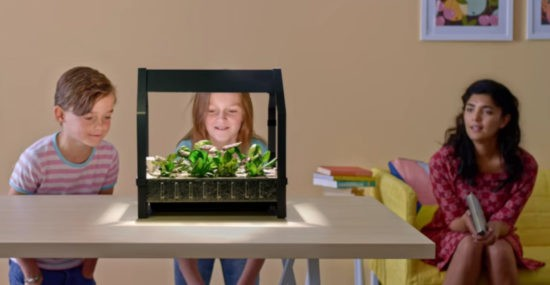 Watch your IKEA indoor garden grow
