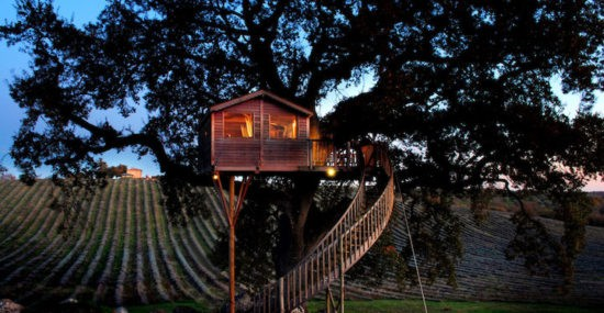 Suite Bleue Treehouse in Italy