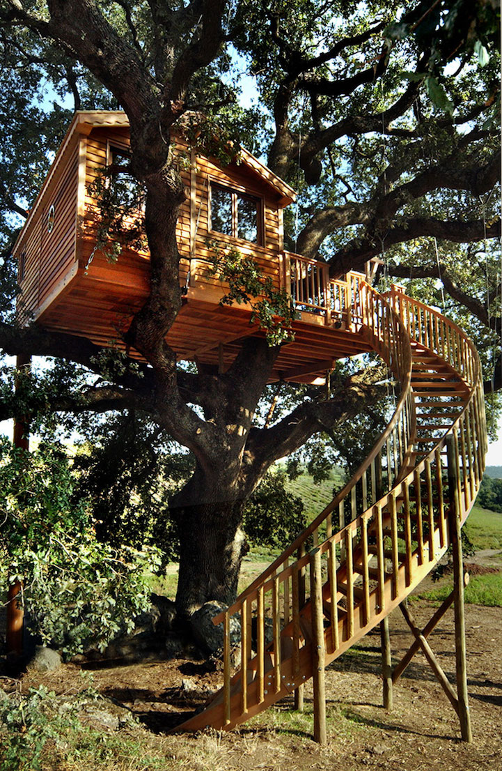 oak treehouse