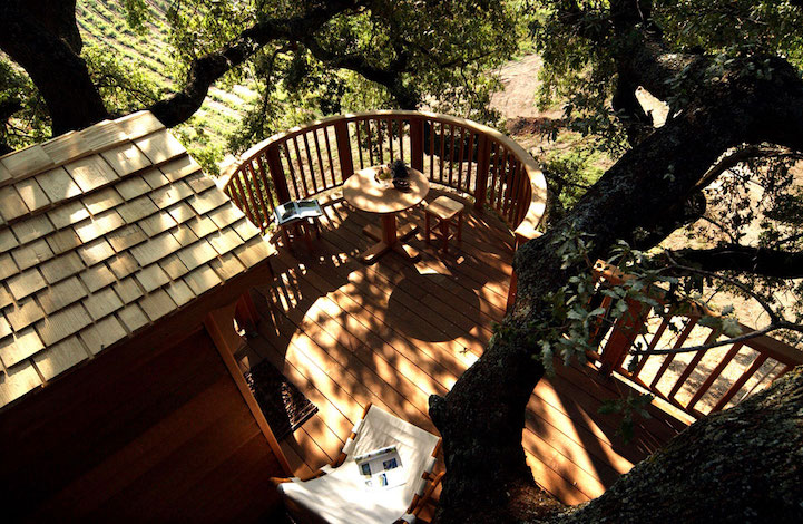 view from top of treehouse