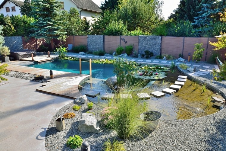 Your own private paradise natural swimming pools by - How to lower phosphates in swimming pool ...
