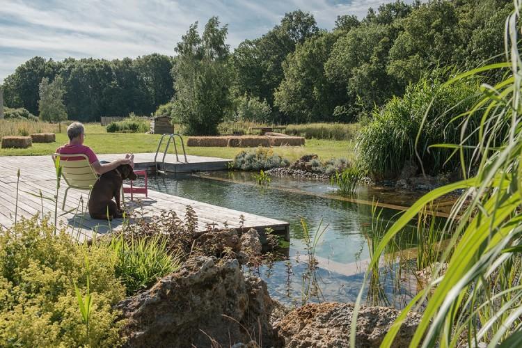 natural swimming pool 7