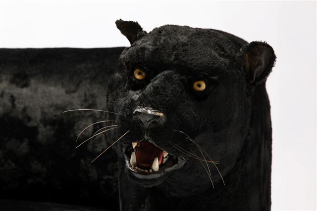 Rocchetti Panther couch
