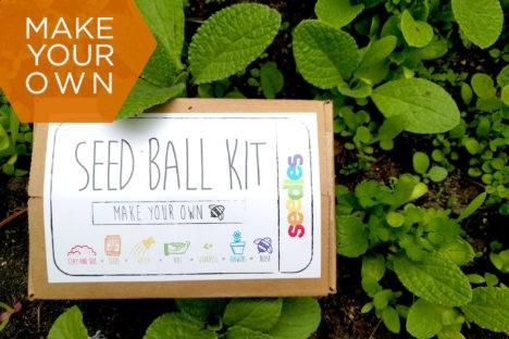 seed bomb kit