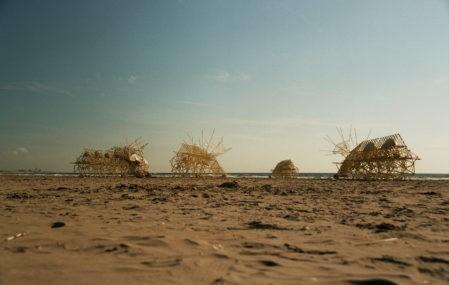 Jensen strandbeests beach animals