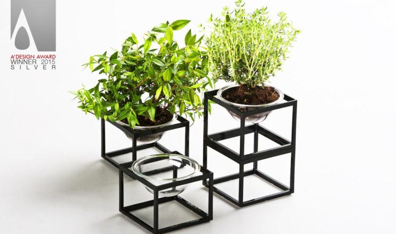 Yu Hiraoka planter