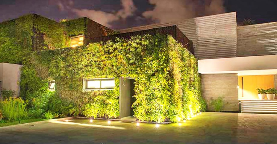 green home living walls