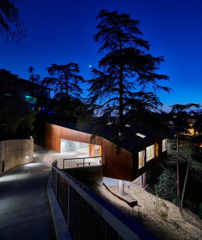 Hillside Home Cozy Cantilevered Design Built Around A Tree