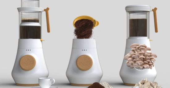 HIFA coffee maker growing mushrooms