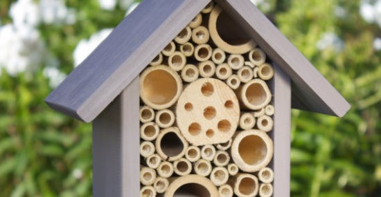 Wudwurx Bee House and Insect Home