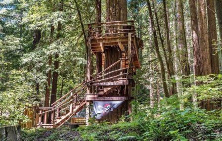 Sonoma Cabin - Pirate Treehouse