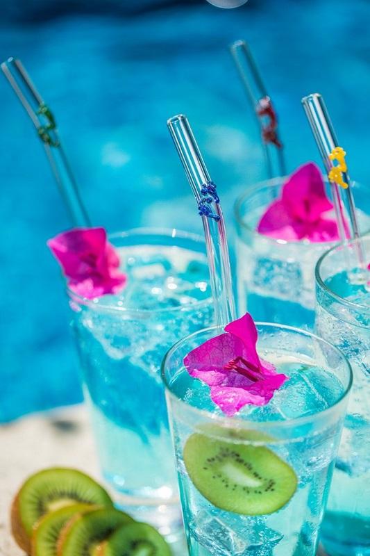 Pyrex Glass Straws - Hummingbird