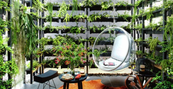 Feature House - Vertical Garden