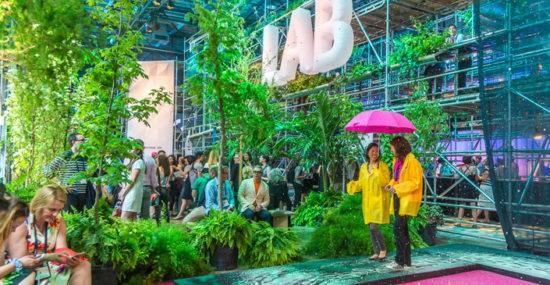Rainforest - C2 Montreal