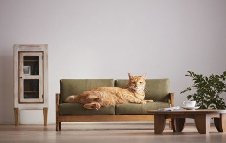craftsman MADE Cat Furniture