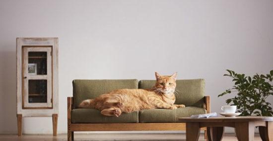 craftsman MADE Cat Furniture