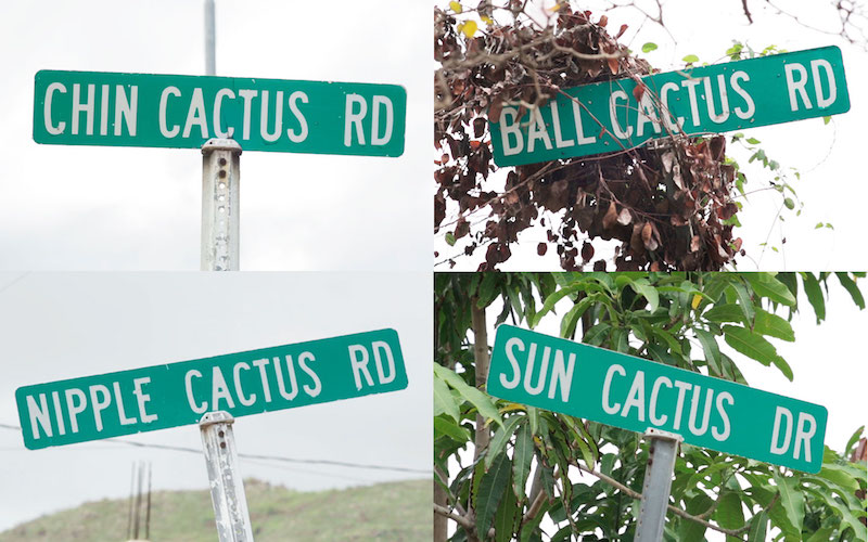 Similar Street Names