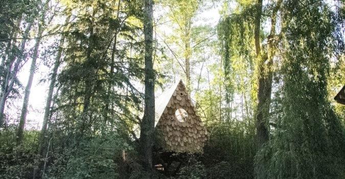 Bird Hut - Studio North