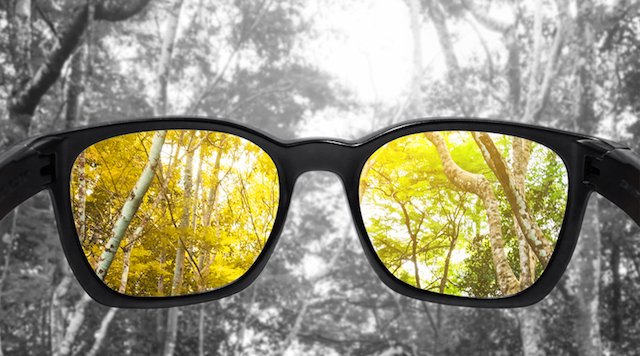 Correct Color Blindness With Enchroma Sunglasses Designs